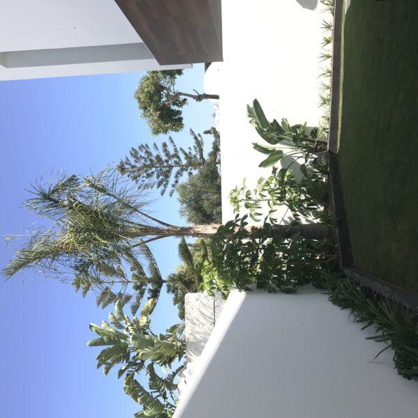 diseno jardin el rodeito 28