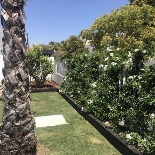 diseno jardin el rodeito 4